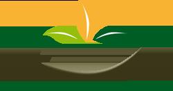 Ayurveda_Logo_w250